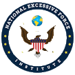 The National Excessive Force Institute (NEFI)